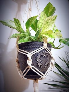 Double Macrame Plant Hanger with Planters and Hook, Macrame Hanging Planter, Plant Holder, 100% Cotton Cord, 2 in Metal Ring