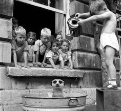 Kids washing Meerkat. South African children, 1950s.