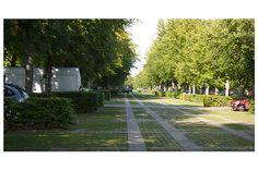 Green parking lot - Technical University of Denmark in Lyngby