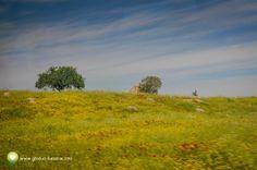 Vacanţă în Kusadasi: Laodicea, un oraş construit de Antiochus II Theos, între anii 261 şi 253 î.Hr - galerie foto