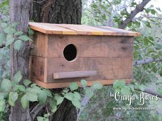 Caja nido para autillos  www.lagranjadebitxos.com Bird, Outdoor Decor, House, Home Decor, Nesting Boxes, Bug Hotel, Farmhouse, Birds, Homemade Home Decor
