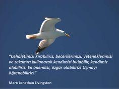 martı jonathan mavi livingston sözleri - Google'da Ara