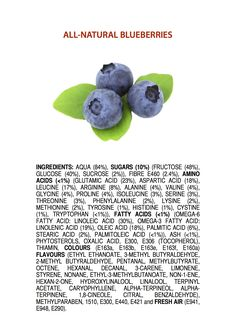 James Kennedy - Ingredients of all natural Blueberries (Myrtilles)