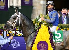 Quality Rules in Breeders' Cup Juvenile Breeders Cup Classic, How To Be Likeable, Road Runner, Thoroughbred, Victorious, The Dreamers, Two By Two, Racing, Auto Racing