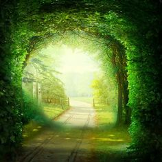 gate way: Gate Way, Summer Backgrounds, Scenery Wallpaper, Paper Frames, Fantasy World, Views Album, Red Flowers, Decoration, Painting Frames