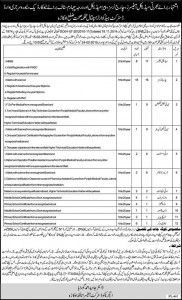 Vacancies in DHQ Hospital District Okara Health Department