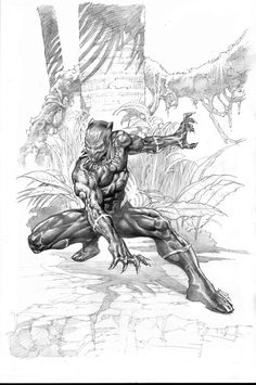 The Black Panther by yvelguichetart