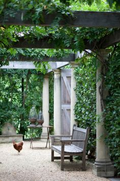 Under the pergola at Krinklewood Vineyard. Photography by Craig Wall.