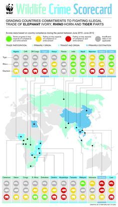 The WWF Wildlife Crime Scorecard report selects 23 range, transit and consumer countries from Asia and Africa facing the highest levels of illegal trade in elephant ivory, rhino horn and tiger parts.