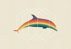 Poster | CALICO DOLPHIN von Budi Kwan | more posters at http://moreposter.de