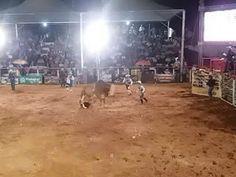 """""""O Grito do Bicho"""": Peão de 17 anos morre pisoteado por touro em rodei..."""