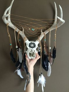 Deer skull and antler Dreamcatcher Turquoise