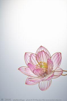 아름다움의 극치인 일본 비녀 공예.jpg(예쁨주의)   인스티즈