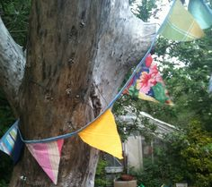 Bunting Forest