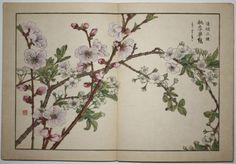 4 Japanese Kacho-e Woodblock Print Albums Kose Shoseki (item #824318, detailed views)