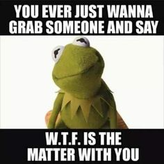 Yeah grabbing Kermits ass for even asking that question! Funny Kermit Memes, Stupid Funny Memes, Funny Relatable Memes, Funny Cartoons, Haha Funny, Funny Stuff, Hilarious, Badass Quotes, Cute Quotes