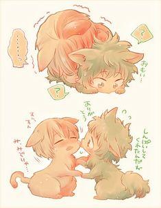 [Cat] Todoroki Shouto & [Cat] Midoriya Izuku