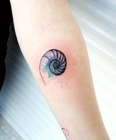 A Fibonacci Nautilus