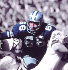 1965 NFL season