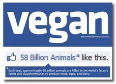 Vegan. 58 billion animals like this
