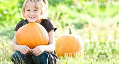 HEE HAW FARMS - Halloween Fall and Fun until Nov 3rd! 12 Acre Corn maze, pick your own pumpkin patch, Cornville Night Terrors, lots of courtyard activities including hayrides, petting farm, giant slide and much more!