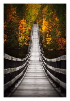 Bridge into Autumn by ~jjuuhhaa on deviantART a bridge that crosses Oulujoki at Utajärvi, which is a small town about from Oulu, Finland The Places Youll Go, Places To See, Beautiful World, Beautiful Places, Belle Photo, Wonders Of The World, Scenery, Around The Worlds, Pictures