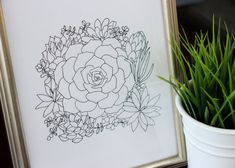 Succulent Bouquet Line Drawing, reproduction from original ink drawing
