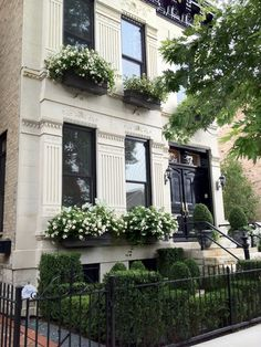 Limestone townhouse with glossy black doors and cornice, complete with green and white window boxes, and an iron gated front garden filled with boxwood hedges in Lincoln Park, Chicago
