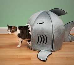 The Shark Attack Pet Beds are here! These super rad pet beds are sized for small dogs, cats, or pocket pets. Cool Cats, I Love Cats, Hate Cats, Crazy Cat Lady, Crazy Cats, Cat People, Cat Furniture, Furniture Design, Furniture Ideas