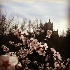 Alcazar Segovia primaveral
