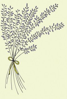 Update: This doodle was used on one of our most popular greeting cards, Thinking of You Lavender. Find it in the shop here. Happy Wednesday! This week, I worked on drawing of a bunch of lavender. I love the crisp and clean smell of lav...