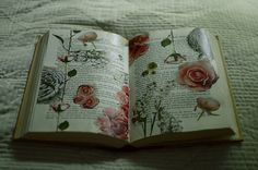Decoupaged pages in a book....