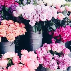 Flowers are my favorite  on We Heart It