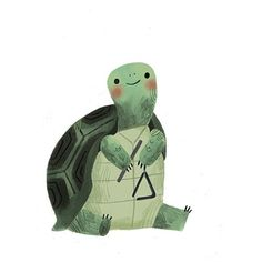 Turtle with a triangle