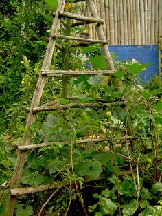 cute garden trellis for the vertical vegetable