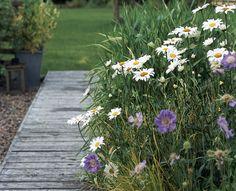 Haveplan til den romantiske have | GardenDoctor