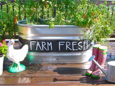 Kitchen garden and more ideas at Sugar Pie Farmhouse!