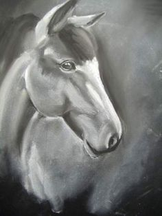 Horse | Teen Charcoal #Art4Literacy