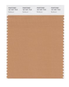 PANTONE SMART 16-1341X Color Swatch Card, Butterum Pantone https://www.amazon.com/dp/B004O7BINI/ref=cm_sw_r_pi_dp_x_Ni6gybHWE8HCV