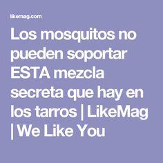 Los mosquitos no pueden soportar ESTA mezcla secreta que hay en los tarros | LikeMag | We Like You