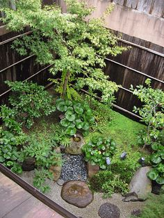 Before After Tsukubai Front Garden Garden Ideas Japanese