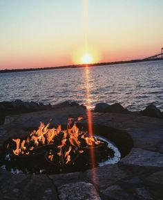 Pineapples, Newport RI |  #itsarhodeislandthing