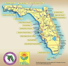 Florida Wine Regions Map