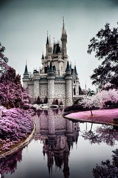 Disney castle in Florida, been here a few times and could never get sick of it!! It's magical!!