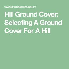 Hill Ground Cover: Selecting A Ground Cover For A Hill