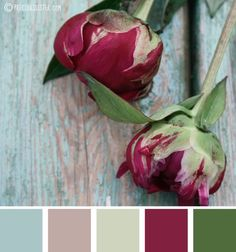 Colour Your World: Design Seeds *** possible color palette for living room? To go with green couch Fall Paint Colors, Paint Color Palettes, Colour Pallette, Color Palate, Colour Schemes, Color Combos, Rustic Color Schemes, Color Schemes With Gray, Rustic Color Palettes