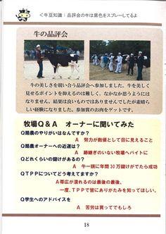 18ページ:牛の品評会参加