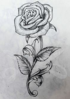 Rose And Stem Tattoo Art Rose Drawing Tattoo, Flower Tattoos - - jpeg Rose Drawing Tattoo, Tattoo Design Drawings, Pencil Art Drawings, Art Drawings Sketches, Tattoo Sketches, Tattoo Designs, Rose With Stem Drawing, Cool Rose Drawings, Horse Drawings