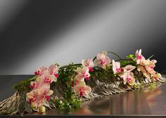 Layers of the velvet grey Stachys leaves as a bed for the beautiful Phalaenopsis orchids by Robert Koene