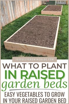 The complete checklist of which veggies to plant in your raised garden beds. Plus learn how to build cheap raised garden beds with this easy to follow step by step tutorial! These DIY raised garden beds are perfect for a small backyard vegetable garden! Use these wood raised garden beds for your garden planning designs this year. #joyfullygrowingblog #gardening #gardenbeds #garden Cheap Raised Garden Beds, Raised Vegetable Gardens, Building Raised Garden Beds, Raised Flower Beds, Diy Garden Bed, Vegetable Garden Design, Easy Garden, Raised Beds, Building Garden Boxes